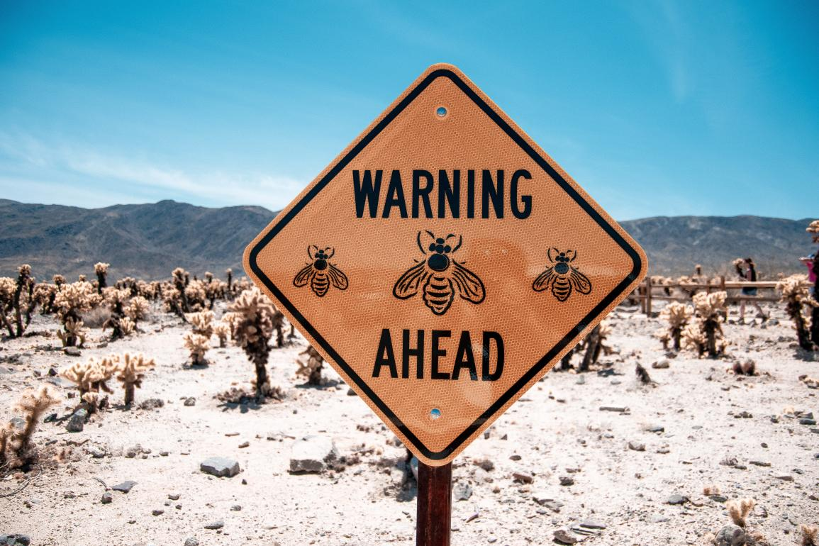 "Yellow sign in dessert that says ""Warning Ahead"" with images of bees."