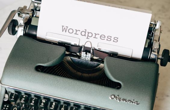 Wordpress typewriter